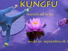 Kungfu taiji - september 2017